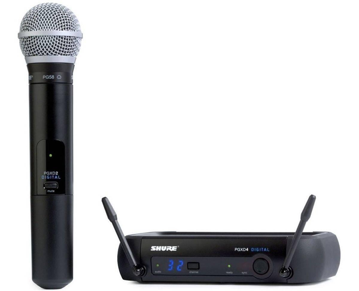 Microfono Inalambrico Shure PGXD24/PG58