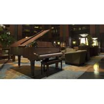 Piano Dgb1 Disklavier