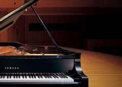 BANNER PIANO DE COLA